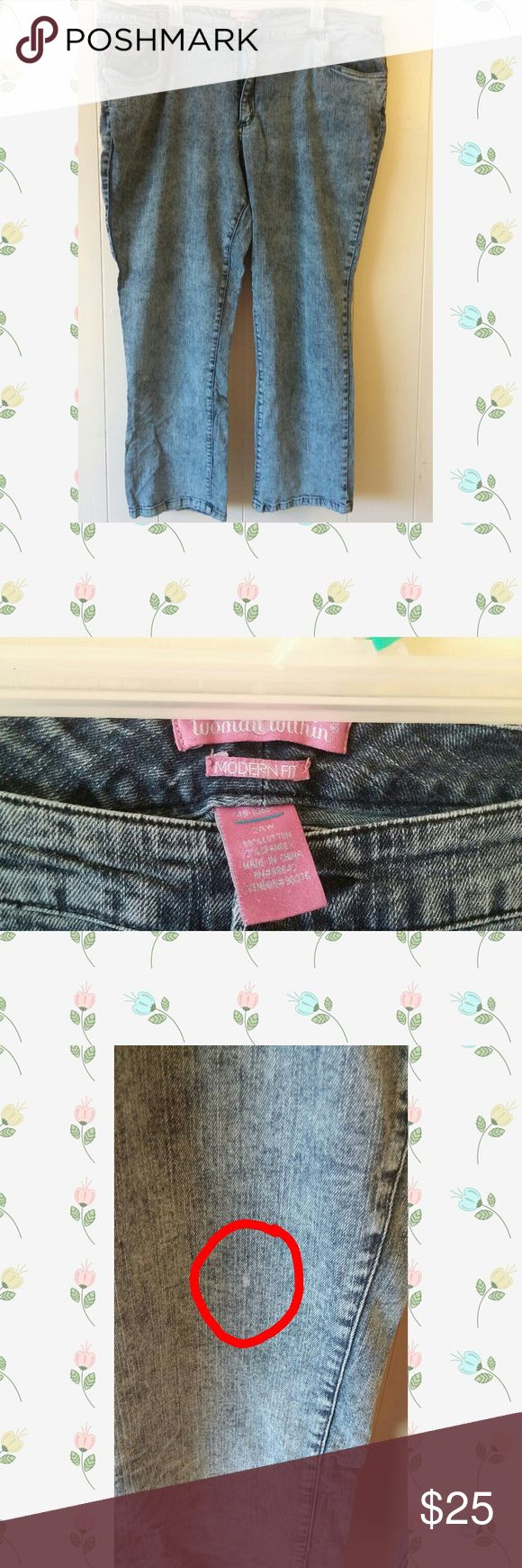 Women Within Acid Wash Skinny Jeans Women Within Acid Wash Skinny Jeans Modern fit size 24W.  Had one spot on them see pics. Great condition otherwise. Worn a few times. Has stretch. Great for my thick thighed sistas. Bundle to save! Floral top and black Toms available in my closet! Woman Within Jeans Skinny