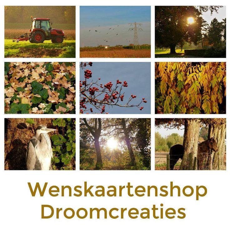 AUTUMN ☆ greetings from Holland! ☆ #wenskaart #wenskaarten #postcards #wenskaartenshop #wishcards #autumn #autumncolors #greetings #greetingcards #holland #herfst #herfstfotografie #herfstfotos #droomcreaties #picoftheday