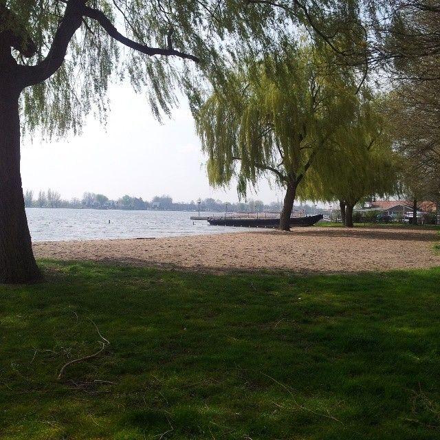 zhz0919 @zhz0919 Mijnsheerenland strandje