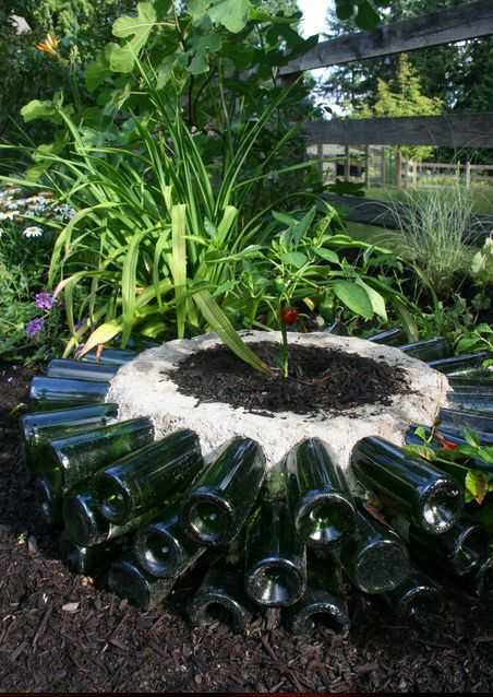 Old glass bottles = perfect planter - DIY