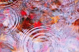 広がり方は規則的。波の打ち方は非規則的。裏に映る紅葉が一味出してる