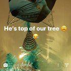 nice Raheem Sterling, he's top of our tree!