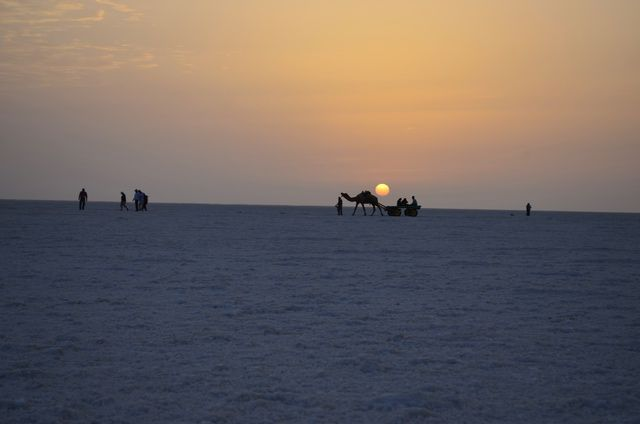 Discover 5 Places You Must Visit in Kutch Gujarat: Great Rann of Kutch & Salt Desert