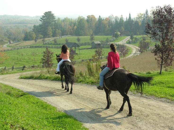 Équitation à l'Auberge Le Baluchon de St-Paulin, en Mauricie. Photo: Michel Julien / http://blogue.tourismemauricie.com/plein-air-et-nature/equitation-en-mauricie-vivez-un-contact-unique-et-magique-avec-de-superbes-chevaux.html