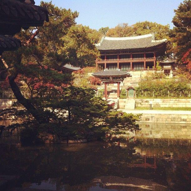 창덕궁 (昌德宮, Changdeokgung) in 서울특별시