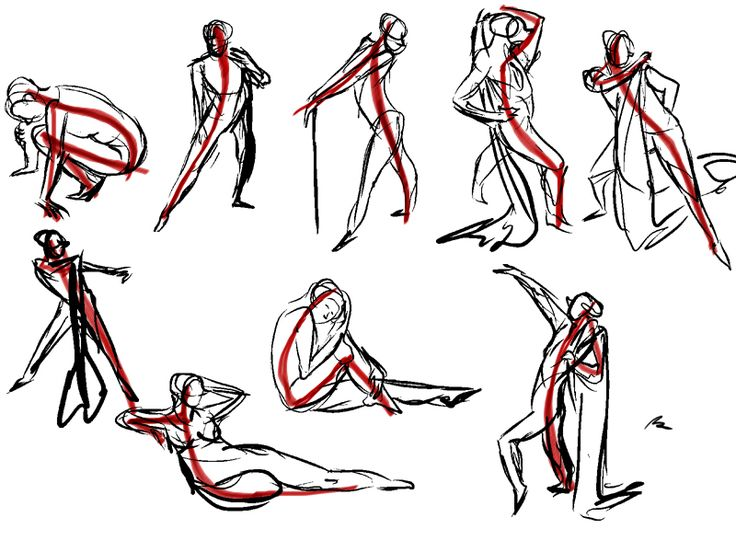 Line Drawing Animation : Best images about line of action on pinterest anatomy