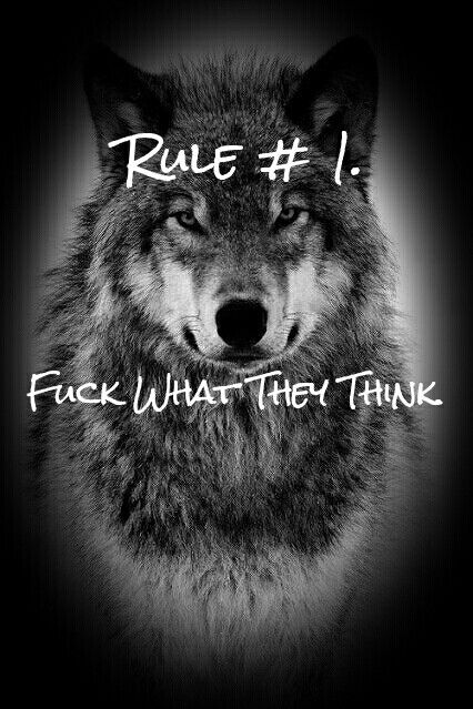 Rule No.1 Fuck what they think #wolves #loveofwolves
