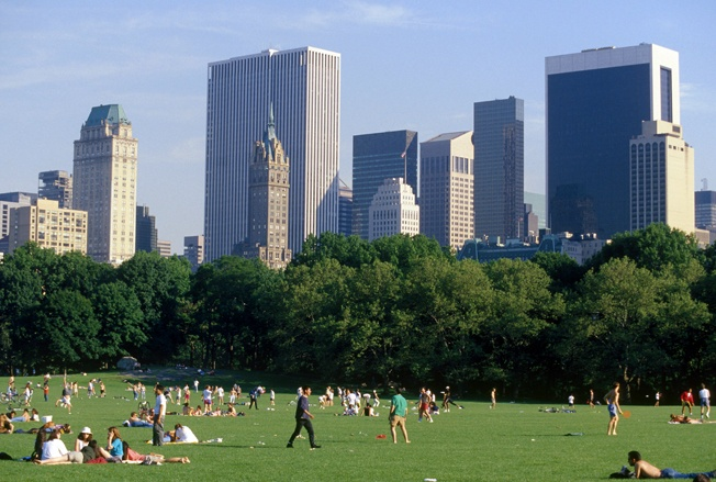 Summer in the City: лето в большом городе