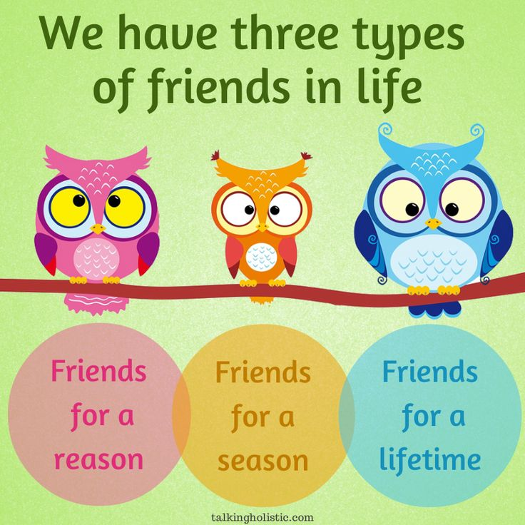Classification essay about different types of friends