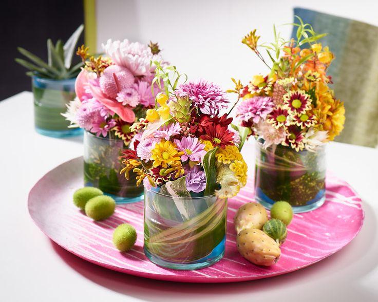ber ideen zu chrysanthemen auf pinterest dahlien orchideen und blumen. Black Bedroom Furniture Sets. Home Design Ideas