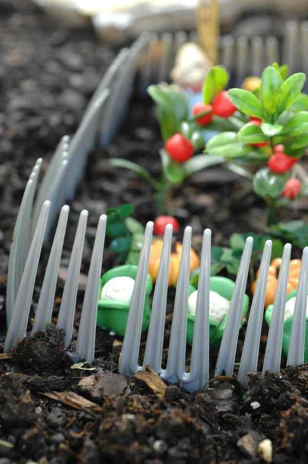 The plastic fork fence might keep the squirrels from tearing up my fairy garden. Wonder if it would deter an armadillo ?