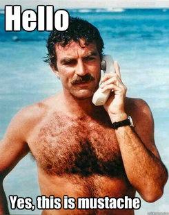 bb8fa5fa693df21cd3842cf9c1f4d246 magnum pi tom selleck 25 best moustache memes images on pinterest moustaches