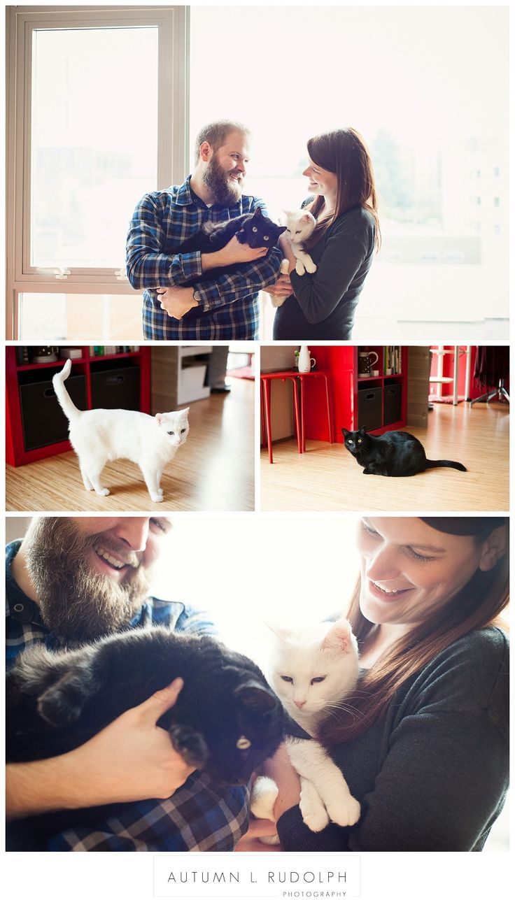 Seattle wedding photographer baking engagement photos with cats   Autumn L. Rudolph Photography
