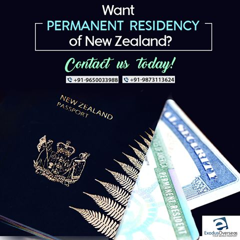Want to live permanently in New Zealand? Get in touch with our experts today. Contact Mr. Pankaj Malhotra (Ex-Visa Officer) Ph: +91-9650033988. For any visa other than Student contact Ms. Rajni Garg (Licensed immigration advisor) at +91-9873113624. #ExodusOverseas #licensed #study #visa #expert #immigration #advisor #consultant #NewZealand