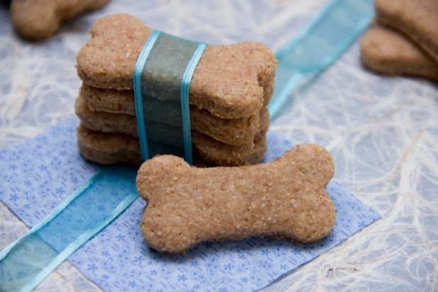 Peanut Butter and Honey Homemade Dog Treats!!  1 1/2 tablespoons canola oil  2 tablespoons smooth peanut butter, no salt or sugar  2 tablespoons honey  3/4 teaspoon baking powder  1 egg  1 cup whole wheat flour~