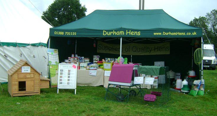 Durham Hens at Wolsingham Show, Weardale, September 2014.