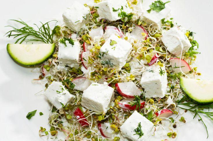 Sałatka z białym serem i kiełkami rzodkiewki - zobacz przepis na Smacznej Stronie Tesco