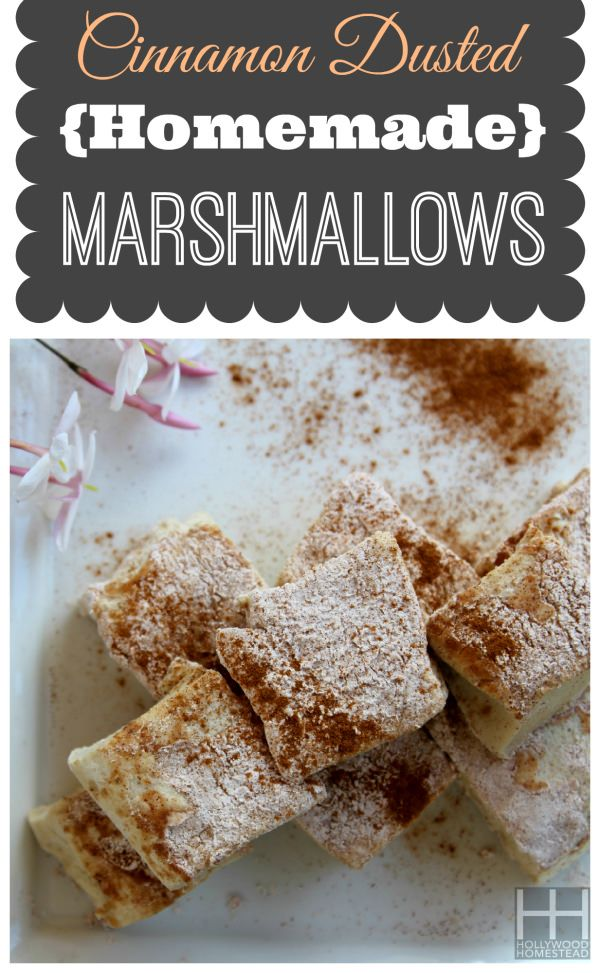 Cinnamon Dusted Homemade Marshmallows