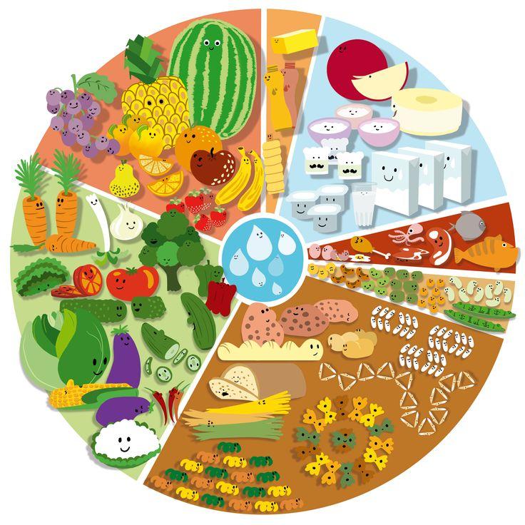 roda dos alimentos - Google Search