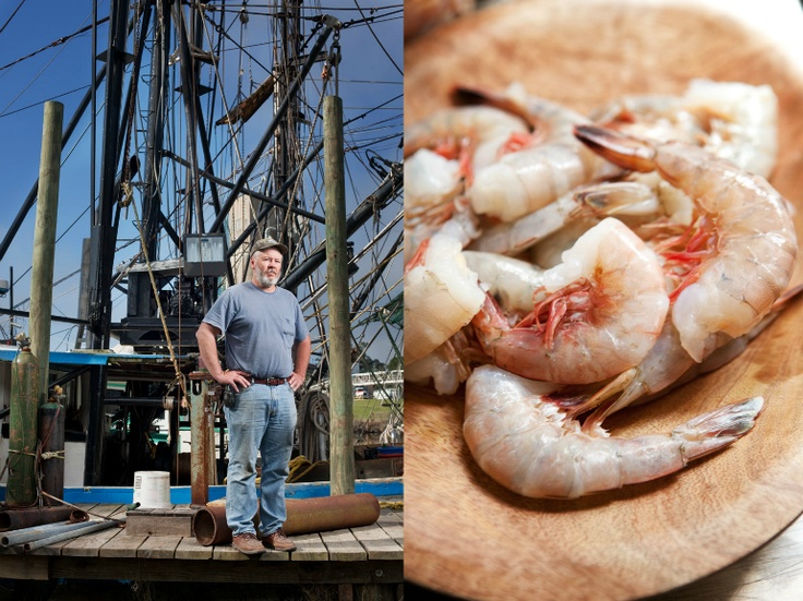 Shrimper, Bruce McCullough, has been harvesting wild shrimp from the Gulf Coast his whole life and worries about his future when so many people buy cheap, chemically-treated, shrimp imported from around the globe. Choose wisely!