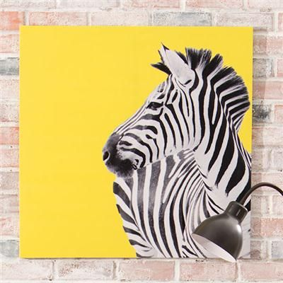 I have this Zebra print canvas in my hallway. $12 from Kmart in Australia!