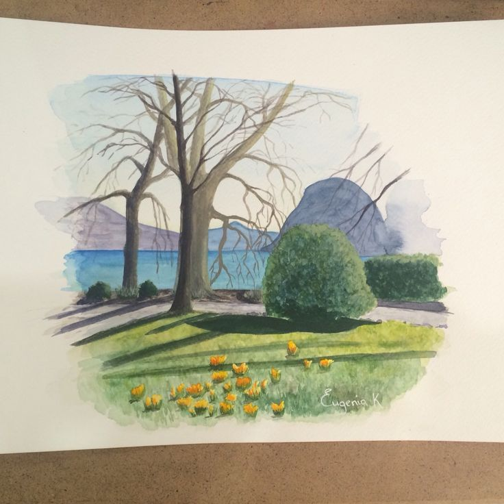 Schmincke watercolors, fabriano paper, A4. Lugano, Parco Civico. Spring, first flowers