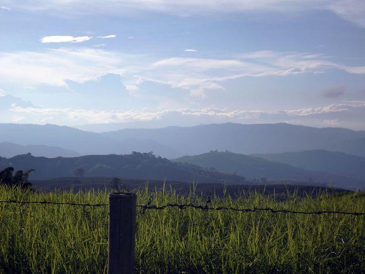 Los potreros con pastales y la vista hacia las montañas. Reservas de alojamiento 3214129517 o email angomera@gmail.com ¿Necesitas fotos como esta para el contenido de tu web? Visita: www.laweb.com.co/contenido-web/
