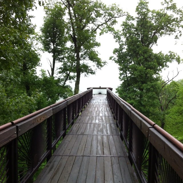 Louisville Walk Boards : Images about bernheim forest on pinterest blame