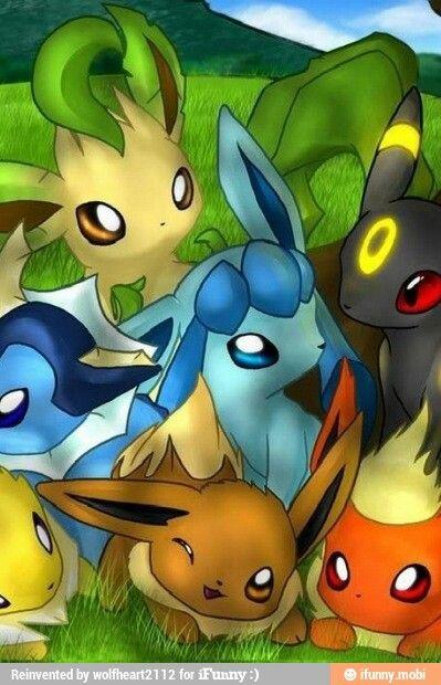 Les 234 meilleures images du tableau pokemon sur pinterest trucs pokemon choses cool et citation - Famille evoli pokemon ...