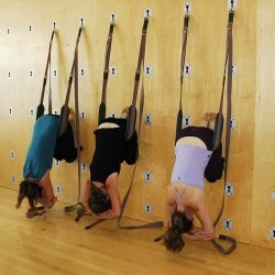 The Great Yoga Wall, for your yoga studio
