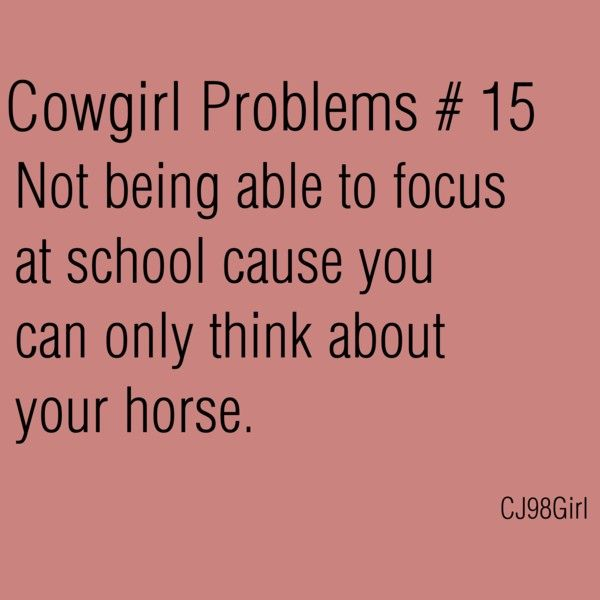 Equestrian problems