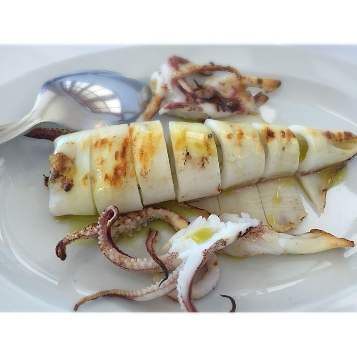 Grilled calamari Saga  Gytheio Mani Peloponnese