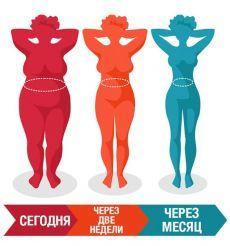 ПРАВИЛА ПОХУДЕНИЯ, КОТОРЫЕ ДОЛЖНА ЗНАТЬ КАЖДАЯ ЖЕНЩИНА    1) Жир не животе не сжигается во время того, когда вы работаете над мышцами пресса. Пресс будет, но под слоем жира. так что живот даже увеличится в объеме. Чтобы на животе сгорал жир..  Читайте продолжение в источнике..»