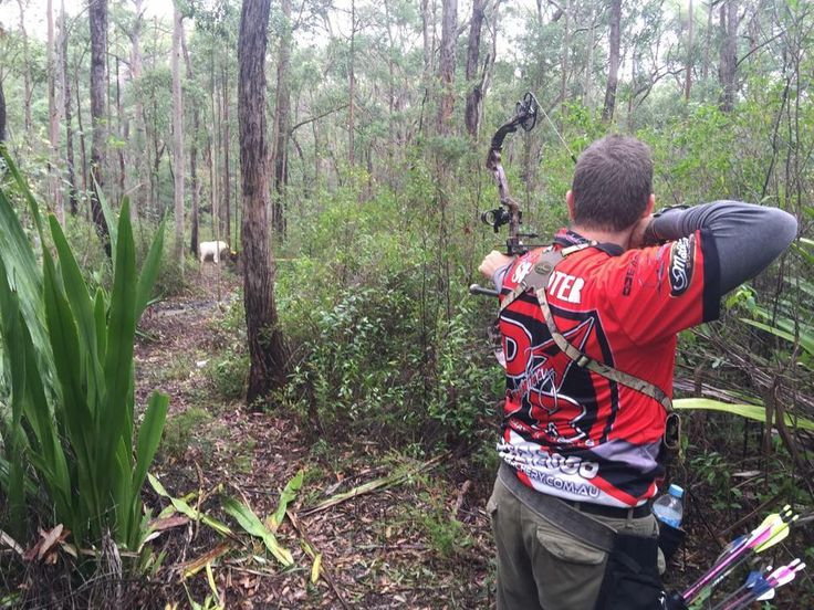 Congratulations to DRA Shooter Skippy Shorten for taking 2nd and making the Top 10 at last weekend Lake Macquarie Field Archers NSW 3D AAA State Series Shoot. Keep up the great work Skippy smile emoticon
