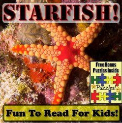 Starfish Books for Kids  {Ocean Animals Unit Study}