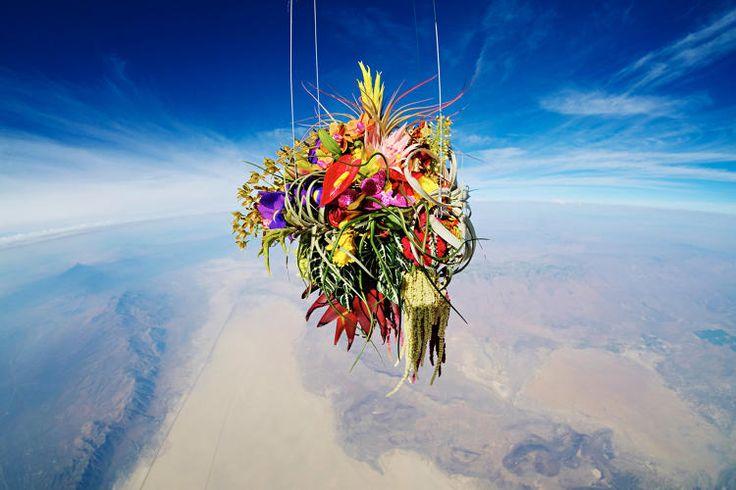 The Japanese florist and experimental artist Azuma Makoto creates art out of nature.