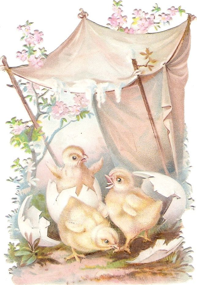 Oblaten Glanzbild scrap die cut  chromo  Ostern easter  Küken chicken  Ei egg