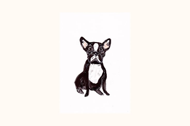 Excited to share the latest addition to my #etsy shop: Black and white French Bulldog painting size A4. .French Bulldog art. Bulldog wallart. Original Bulldog ink painting http://etsy.me/2jwtRDU #art #frenchbulldog #frenchbulldogart #bulldogwallart #bulldogpainting