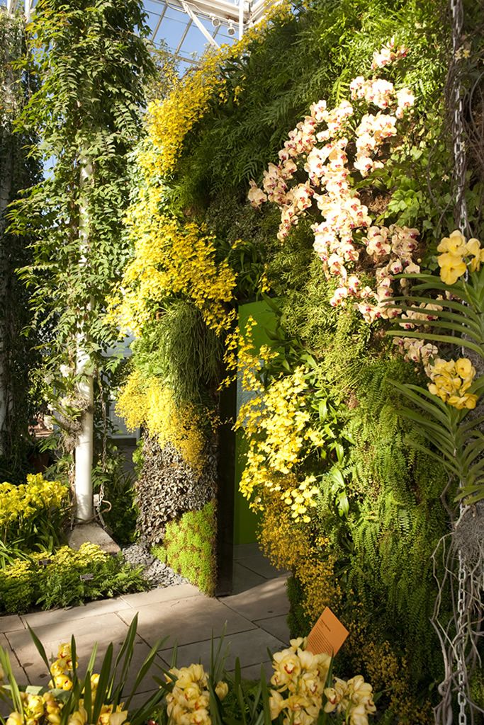 Orchid Wall @ New york Botanical Garden by Patrick Blanc