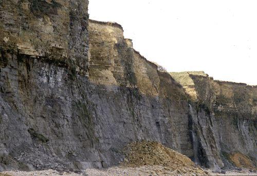 """""""A l'Ouest du cap Manvieux L'amoncellement de calcaires jaunâtres provient de l'éboulement d'un pan de la partie supérieure de la falaise, formée par le Calcaire de Creully.A gauche au premier plan, un autre amoncellement, plus modeste, est issu de l'éboulement des calcaires marneux gris du membre supérieur des Marnes de Port."""""""