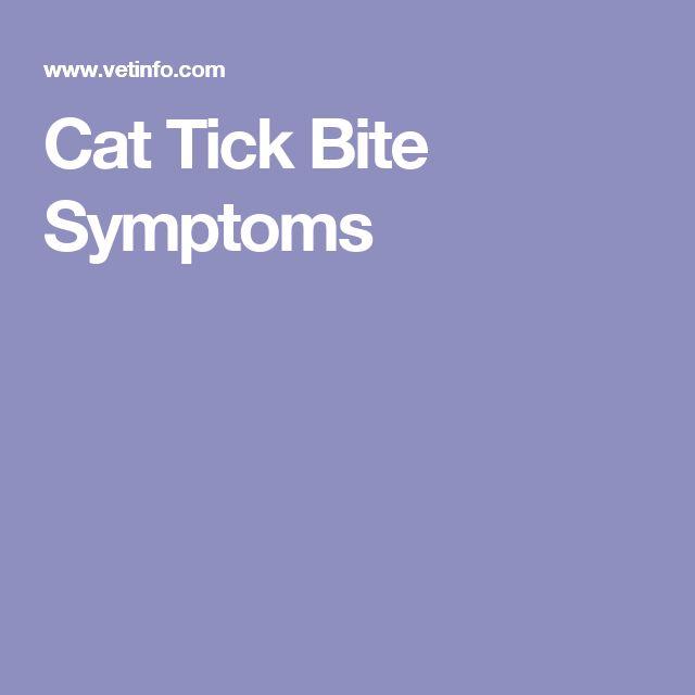 Cat Tick Bite Symptoms