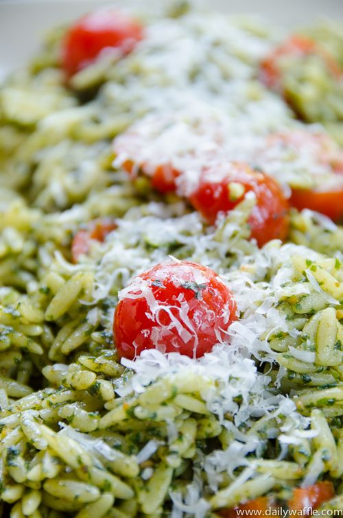 Secret unlocked: how to make a really delicious basil pesto orzo salad |dailywaffle