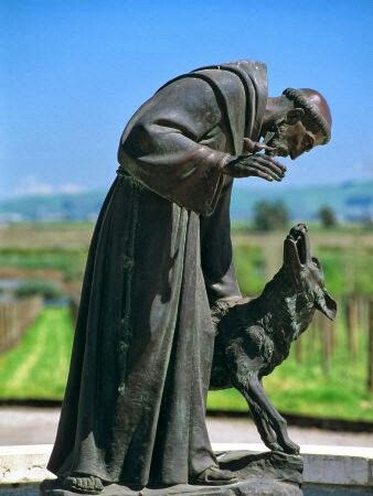 Beautiful St Francis and the animals