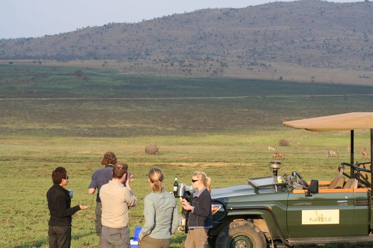Game Drives in Welgevonden Game Reserve