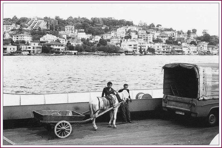 İstinye önlerinde Paşabahçe Arabalı Vapuru 1950'ler / İstanbul