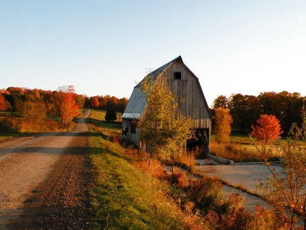 Back Roads LivingCountry Roads, Back Roads, Road Trips, The Farms, Vermont, Autumn Colors, Roads Trips, Dirt Roads, Old Barns