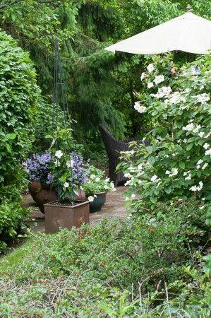 Through the Garden Gate 2014 : Hogg's Hollow House #4
