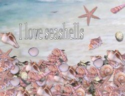 Crafts With Seashells  -- This is a wonderful site for links to sea shell craft projects.