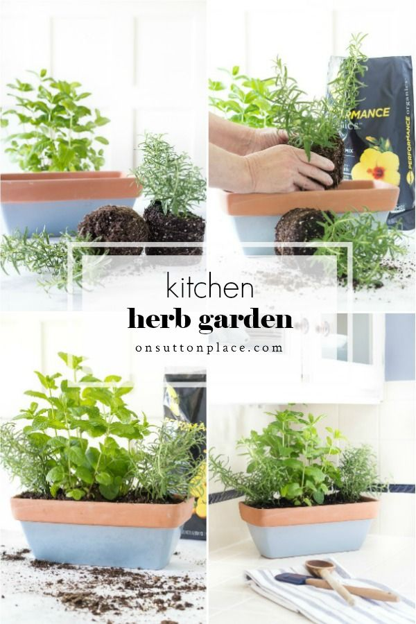 Small Herb Garden For The Kitchen On Sutton Place In 2020
