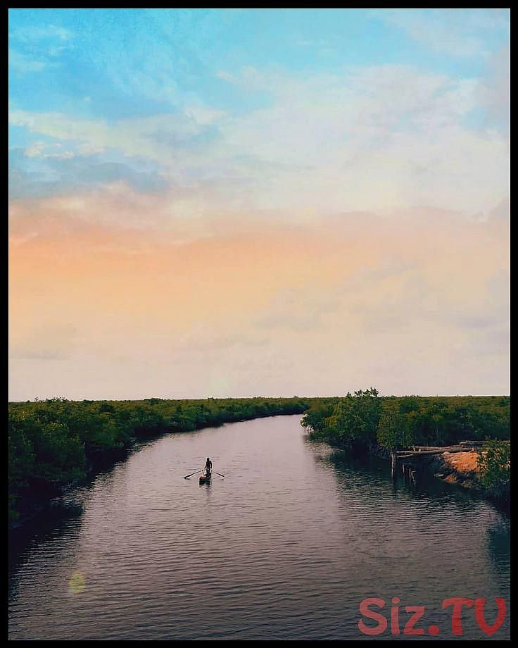 hutan mangrove aceh senja puisi quotes penikmatsenja sunset